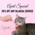 April 2021 Smoothe Special